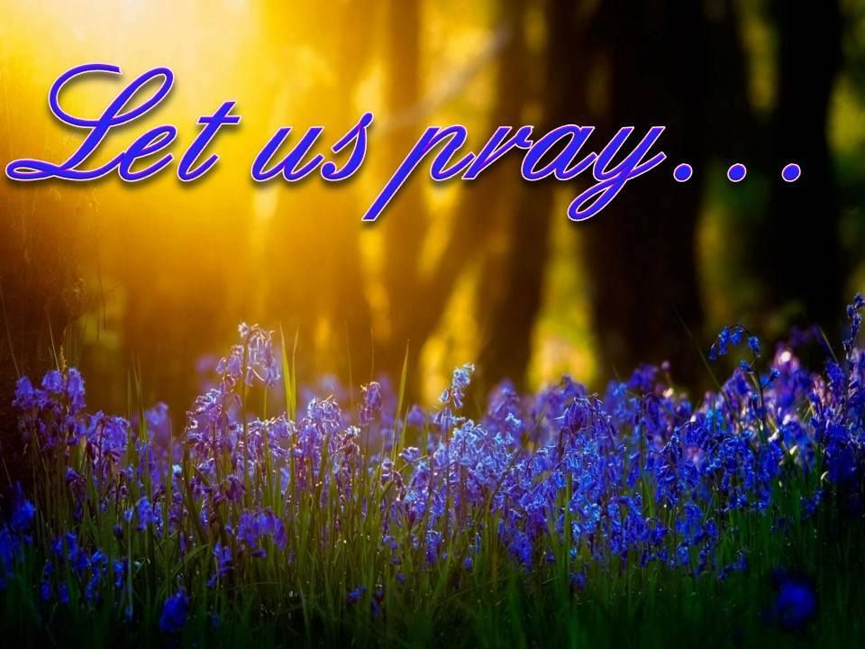 ♥♥♥ Let us pray: Lord, we humble ourselves before you today ...