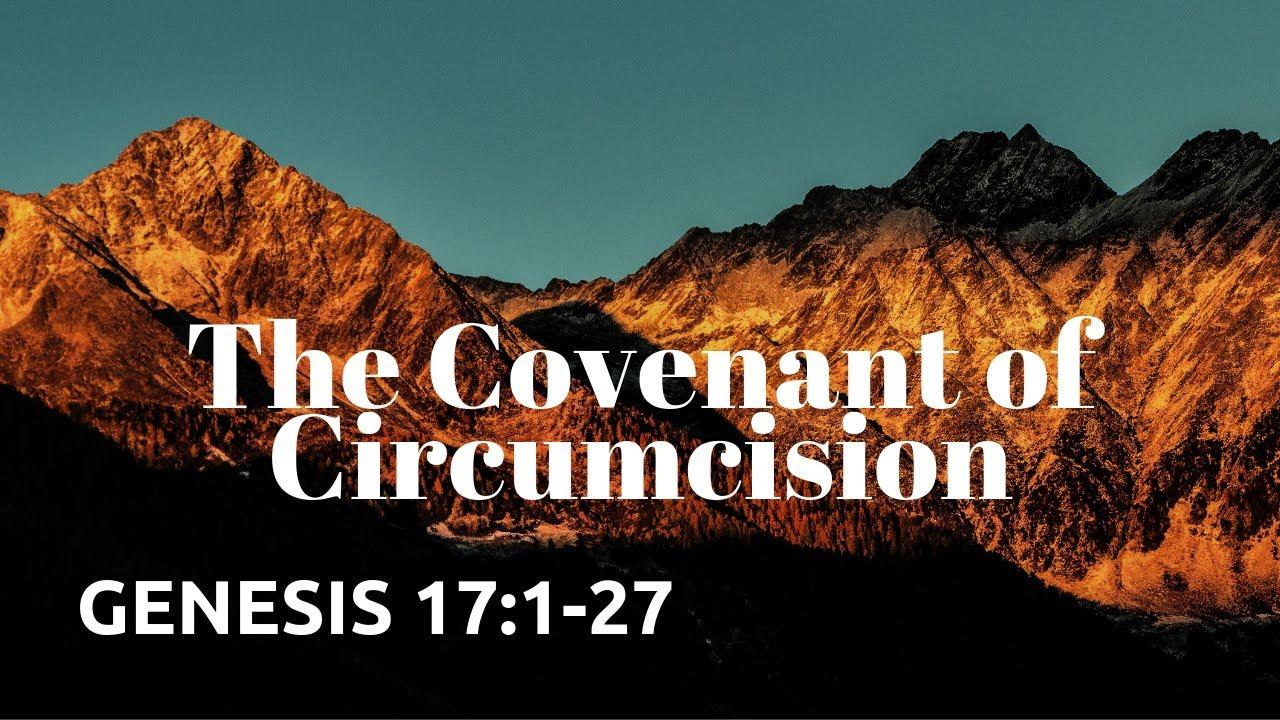 GENESIS 17:1-27 The Covenant Of Circumcision NIV Female Narration - copied from a YouTube video