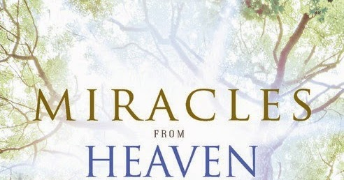 Image result for miracles from heaven