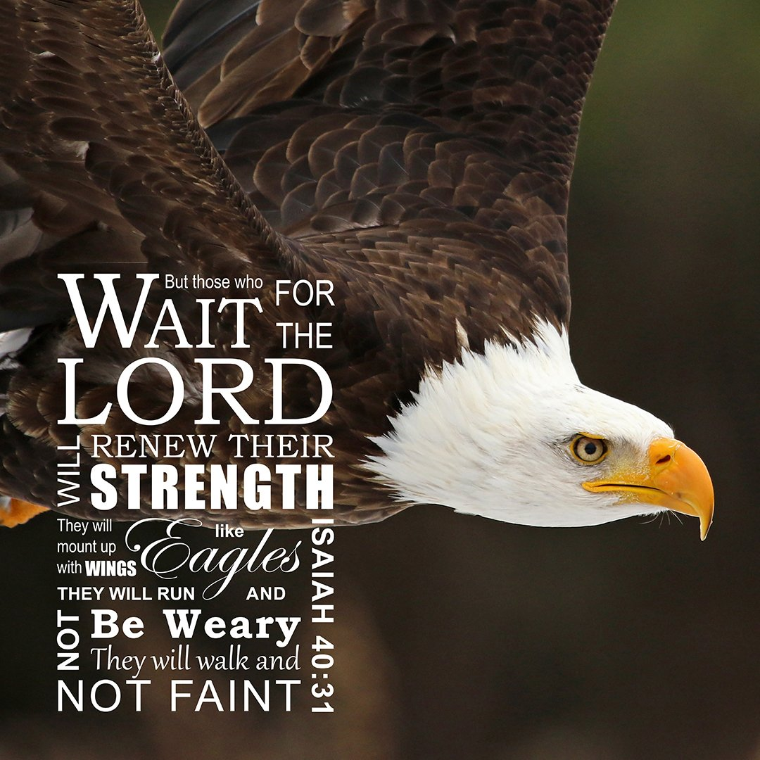 Isaiah 40:31 Wings Like Eagles - Free Bible Verse Art Downloads - Bible  Verses To Go