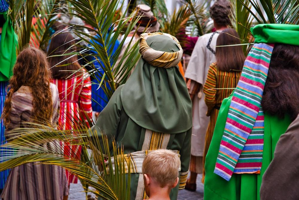 Palm Sunday Pictures   Download Free Images on Unsplash