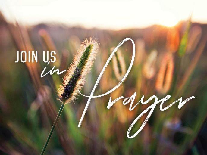 Praying Moms – LRPC HOME