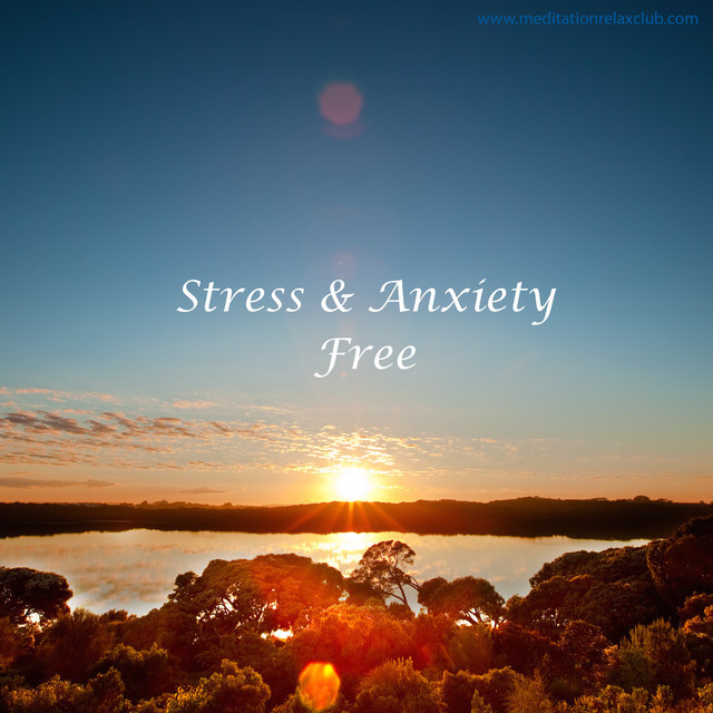 Stress & Anxiety Free - playlist by Calming Music Academy | Spotify