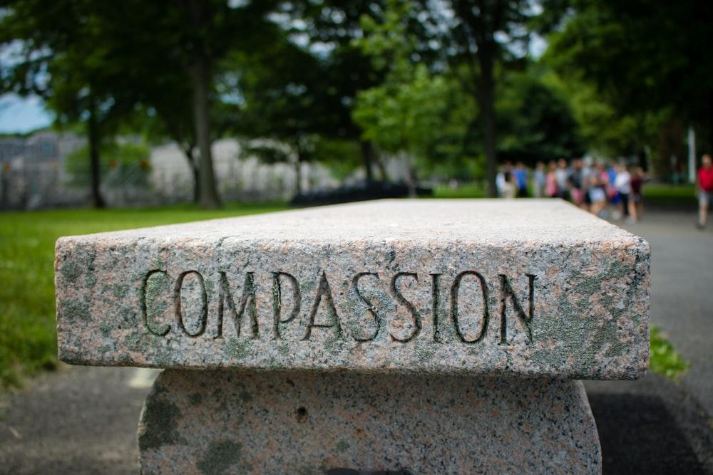 100+ Compassion Pictures | Download Free Images & Stock Photos on Unsplash