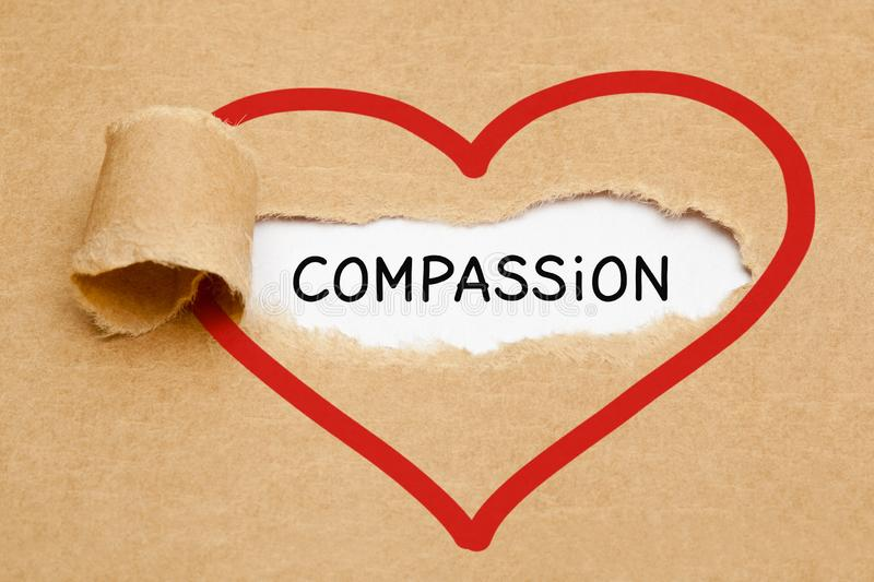 23,640 Compassion Photos - Free & Royalty-Free Stock Photos from Dreamstime