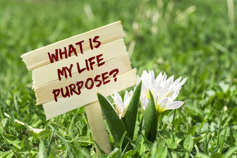 6,925 Life Purpose Photos - Free & Royalty-Free Stock Photos from Dreamstime