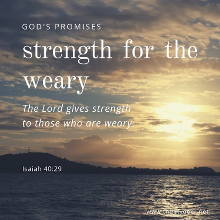 Promises of God: Strength for the weary - THIRSTY DEER