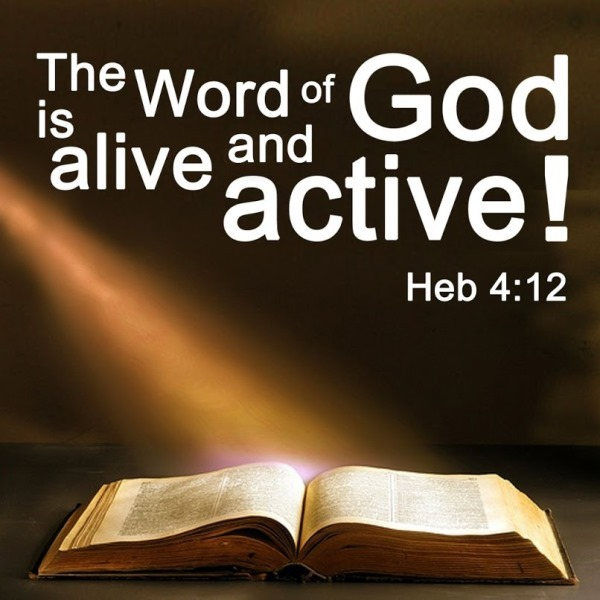 The Living... — Hebrews 4:12 (NIV) - For the word of God is alive...